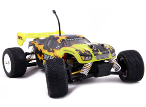 Camioneta TRUGGY 4×4 Brush