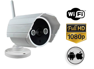 Cámara de Seguridad Gadnic CSE 48 FULL HD P2P | IP | Wifi
